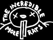The Incredible Mole Rats