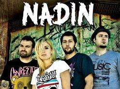 Image for NADIN