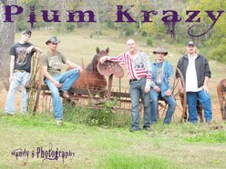 Image for Plum Krazy Band