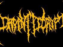 Dormant Decrypt