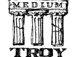 Image for Medium Troy