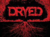 DRYED