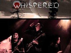 Image for WHISPERED