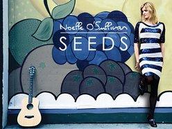 Image for Noelle O Sullivan