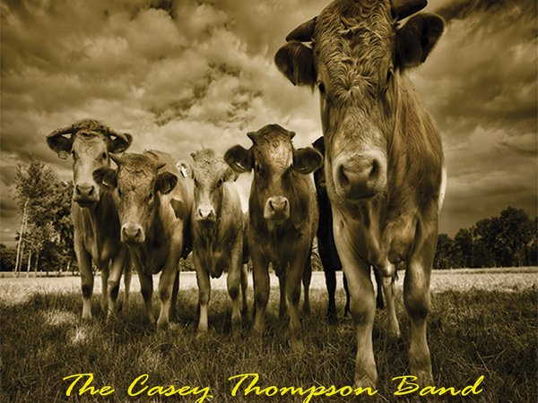 Image for The Casey Thompson Band