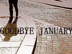 Image for goodbye january