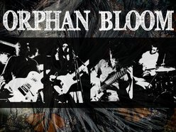 Image for Orphan Bloom