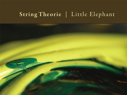 Image for String Theorie
