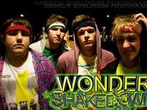 Wonder Shakedown!