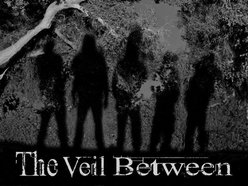 Image for The Veil Between