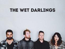 The Wet Darlings