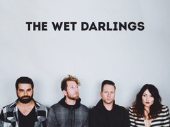 Image for The Wet Darlings