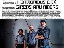 Damon Wood's Harmonious Junk
