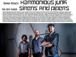 Image for Damon Wood's Harmonious Junk