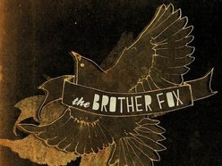 Image for The Brother Fox