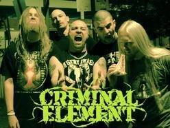 Image for Criminal Element