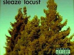 Image for Sleaze Locust