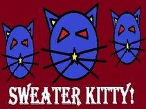 Sweater Kitty!