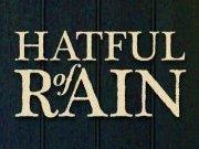 Image for Hatful of Rain