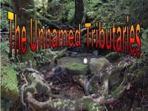 The Unnamed Tributaries