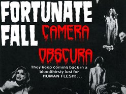 Image for Fortunate Fall