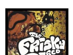 Image for The Frisky Disco