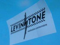 Levinstone