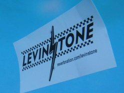 Image for Levinstone