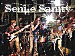 Image for Senile Sanity