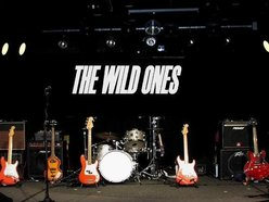 Image for The Wild Ones