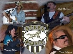 Steel Pony Band