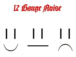 Image for 12 Gauge Noise