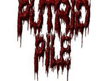 PUTRID PILE