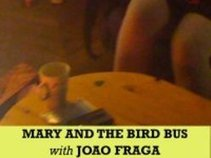 Mary and the Bird Bus