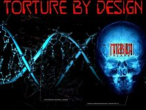 TORTURE BY DESIGN