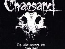 Chaosanct