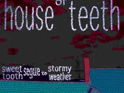 Image for House of Teeth