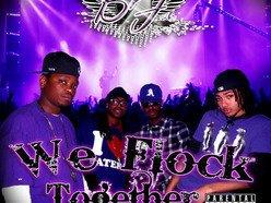 Image for Black Flock Gang