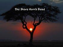 The Steve Harris Band