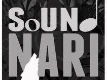 sound NARI