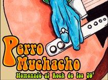 PERRO MUCHACHO