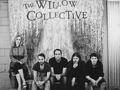 Image for The Willow Collective