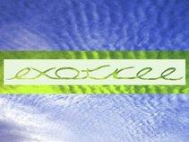 Exotree