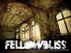 Image for FELLOWBLISS