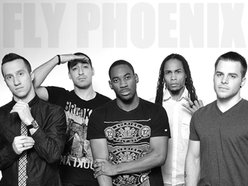 Image for Fly Phoenix