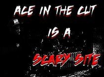Ace Swagga