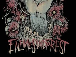 Image for Enemies Laid to Rest