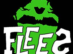 Image for Flees