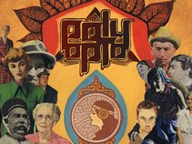 The Poly Opto