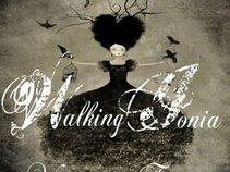 Walking Ionia